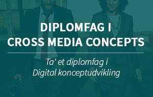 Diplomfag Cross media content